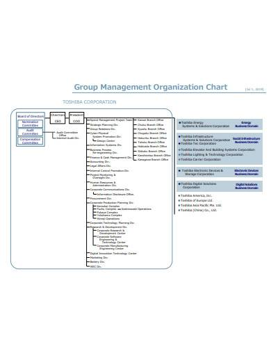 management organisation chart in pdf