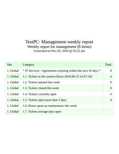management weekly report template
