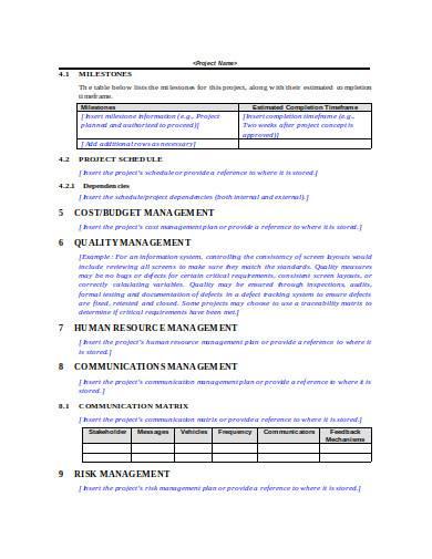 management work plan in doc