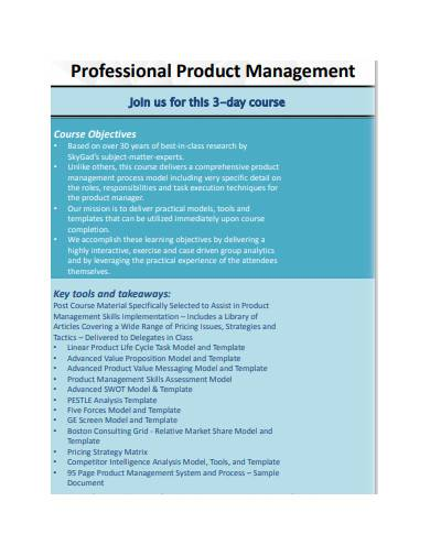 professional product management template