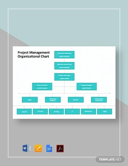 project management organizational chart template