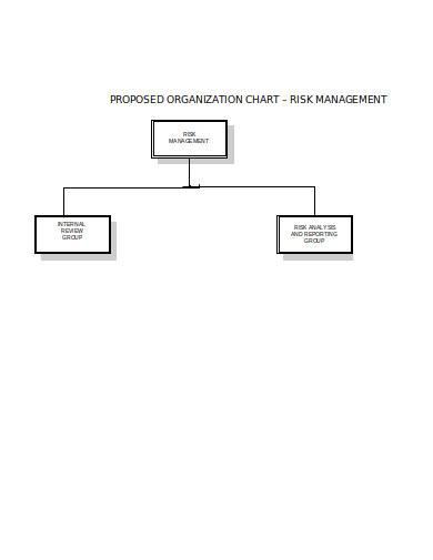 risk management chart template