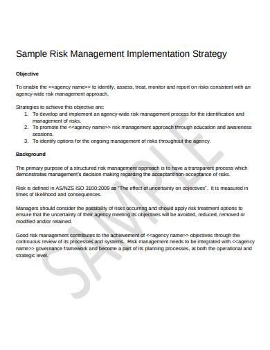 risk management implementation strategy