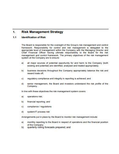 risk management strategy in pdf