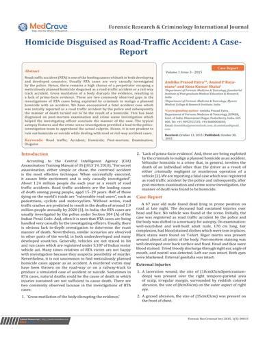 sample disguised homicide case report