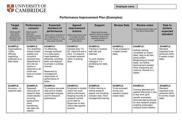 sample university performance improvement plan