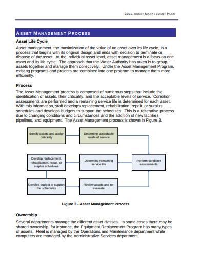 strategic asset management plan example