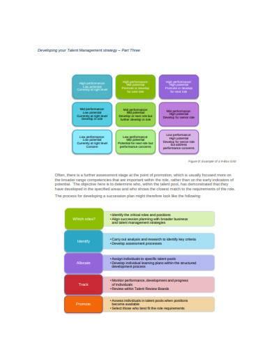 talent management strategy sample1