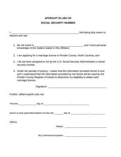 affidavit in lieu of social security number