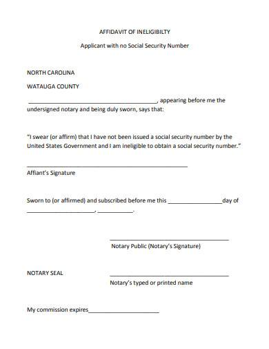 affidavit of ineligibility applicant with no social security number