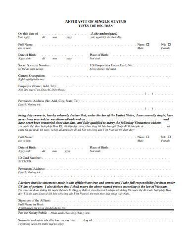 basic affidavit of single status