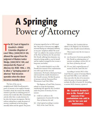 basic springing power of attorney