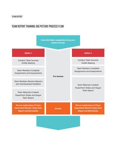 basic team report
