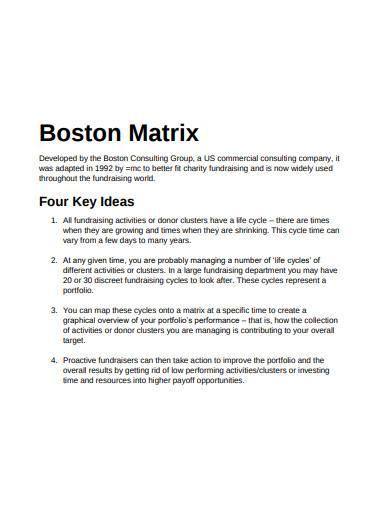 boston matrix in pdf