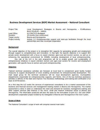 business development services market assessment