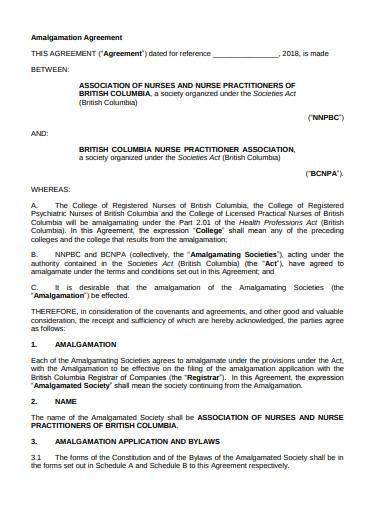 college amalgamation agreement sample in pdf
