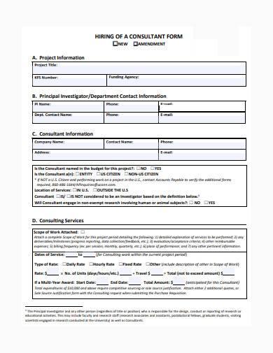 consultant form in pdf