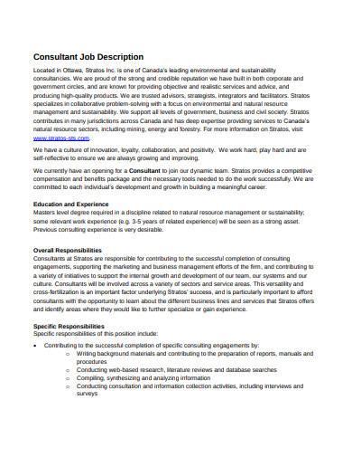 consultant job description