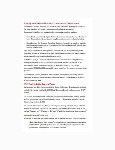 consultant marketing plan in pdf