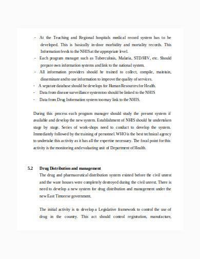 consultant report in doc
