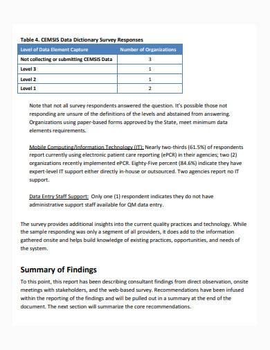 consultant report in pdf