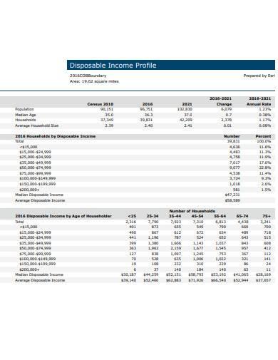 disposable income profile