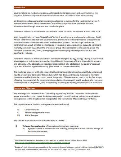 field testing report sample