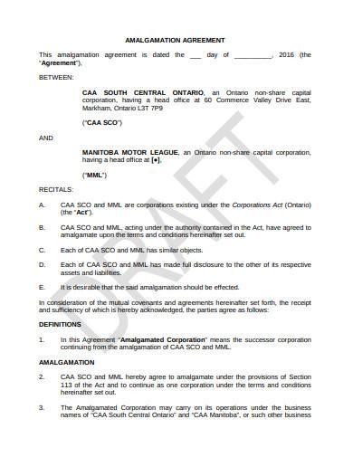 in depth automobile amalgamation agreement sample