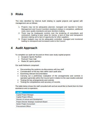 internal audit project report