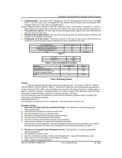 promotion and distribution strategy template