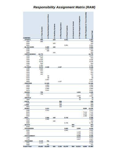 responsibility assignment matrix in pdf