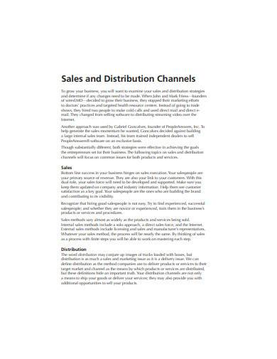 sales and distribution channels example