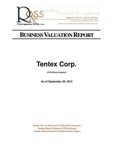 sample business valuation report