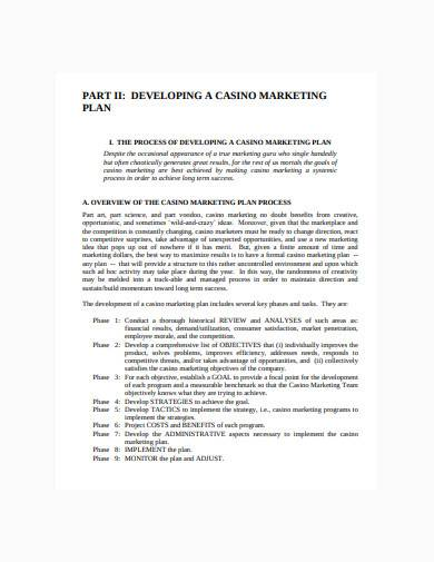 sample consultant marketing plan template