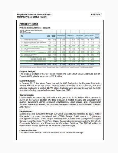 sample consultant status report in pdf