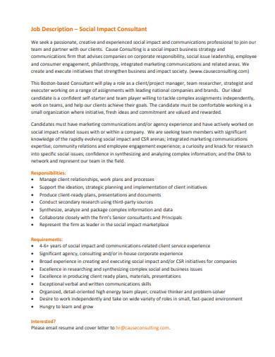 social impact consultant job description
