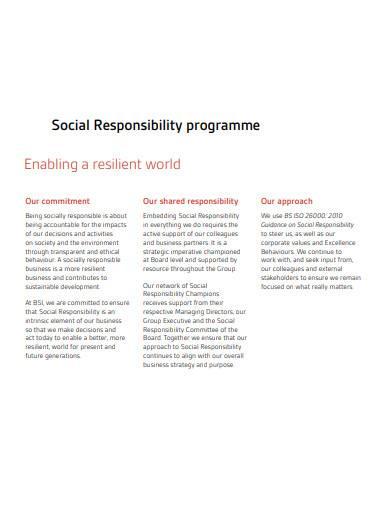 social responsibility programme