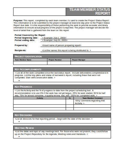 team member status report