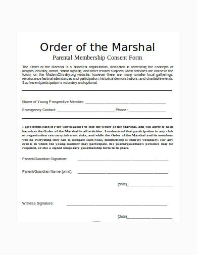 temporary guardianship form in doc
