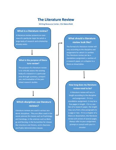 the literature review in pdf