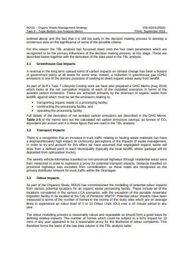 triple bottom line analysis memo sample