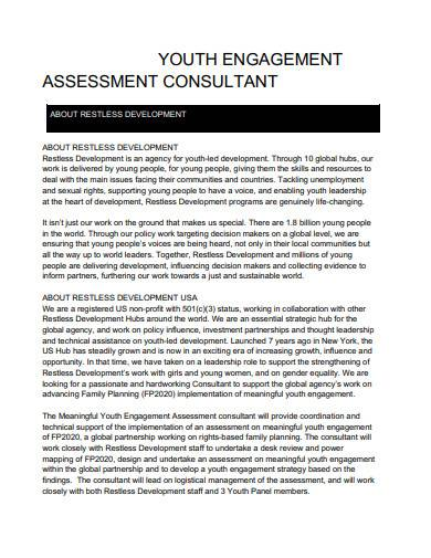 youth engagement assessment consultant