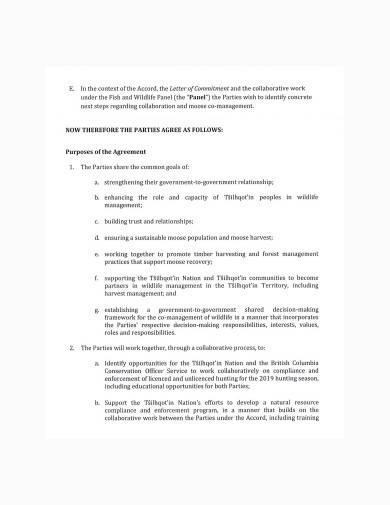 basic co management agreement sample