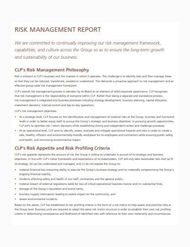 basic risk management report sample
