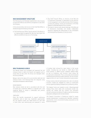 general risk management report template