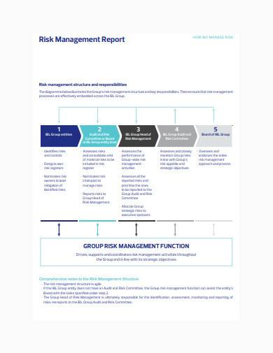 project risk management report sample