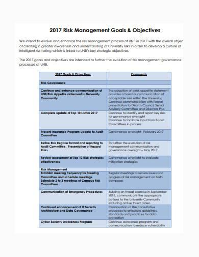 risk management report sample