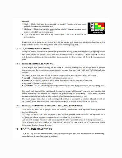 risk management report in doc