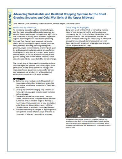 agricultural research report template
