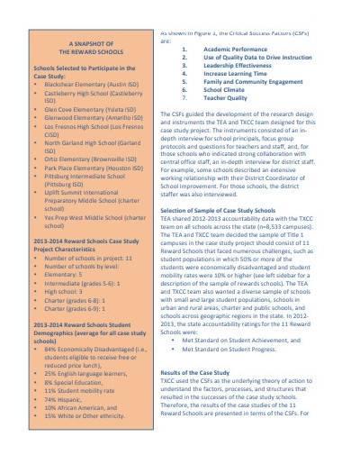 case study summary report template